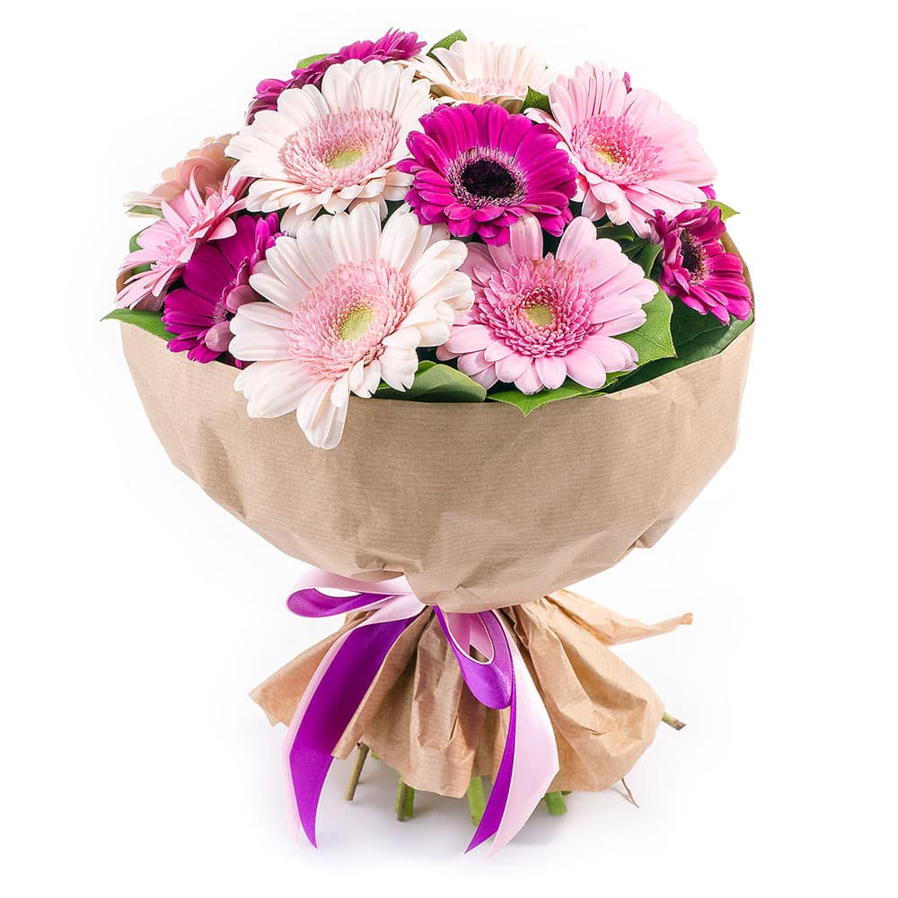 Розу, заказать цветы герберы с доставкой