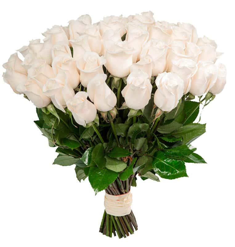 Подарить букет белых роз фото